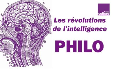 What does the brain of philosophers look like ?